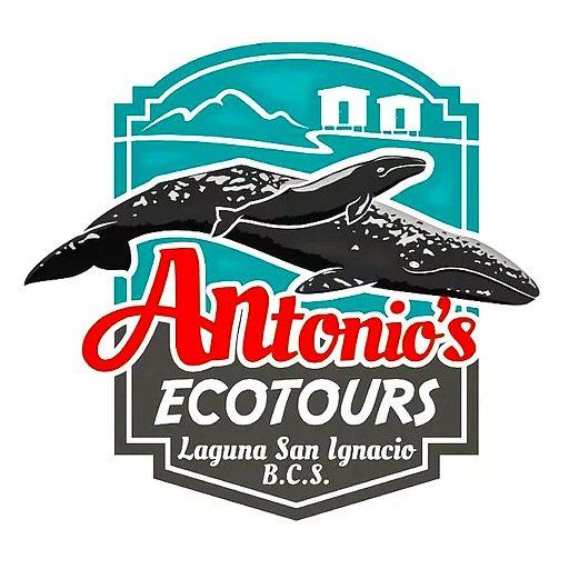 cropped-antonios-logo-2018-512.jpg